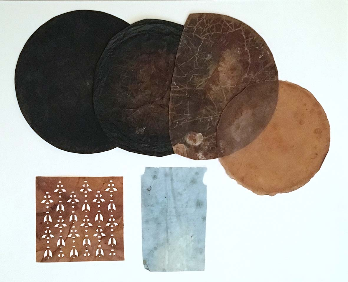 kombucha leather samples